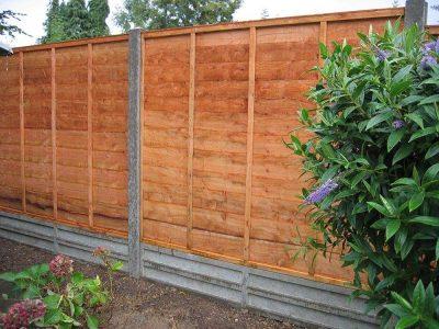 fencing1 (1)